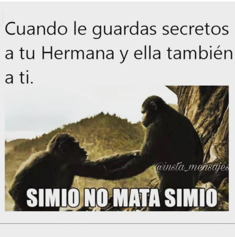 Pin By Vero On Amor A La Familia Memes Humor Lol