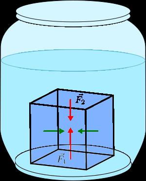 Forze Che Agiscono Sui Corpi Immersi Nei Fluidi La Spinta Di Archimede Spinta Idrostatica E Il Principio Di Archimede Leggende Matematica Forza