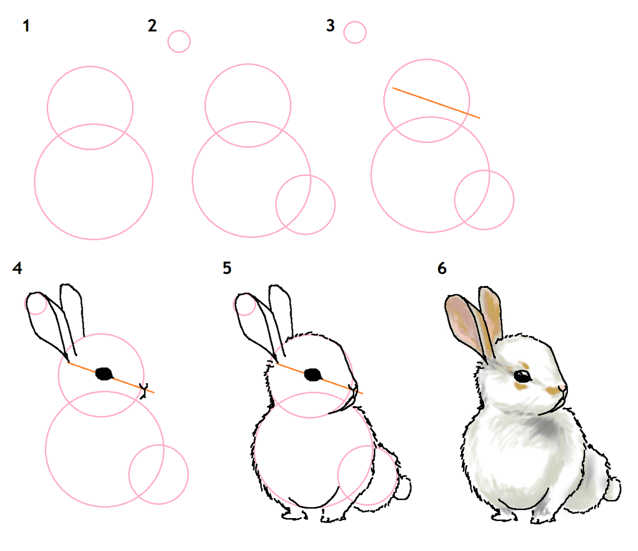 Base De Dessin On Dessine Un Lapin Site De Wild Little Mango Rabbit Easy Drawing For Beginners Tutoriel Pour Debutant En 2020 Dessin Lapin Dessin Dessin Debutant