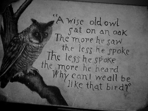 owl from zelda | wise old owl owl quote quotes words writing words ...