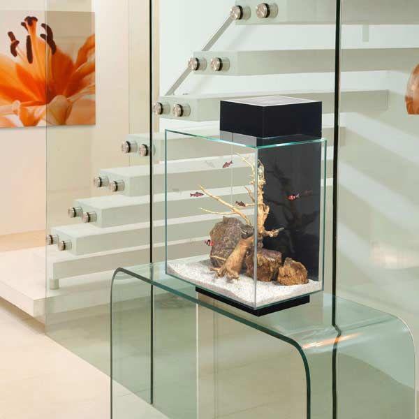 Fluval Edge 46L LED Aquarium on sale   free uk delivery ...