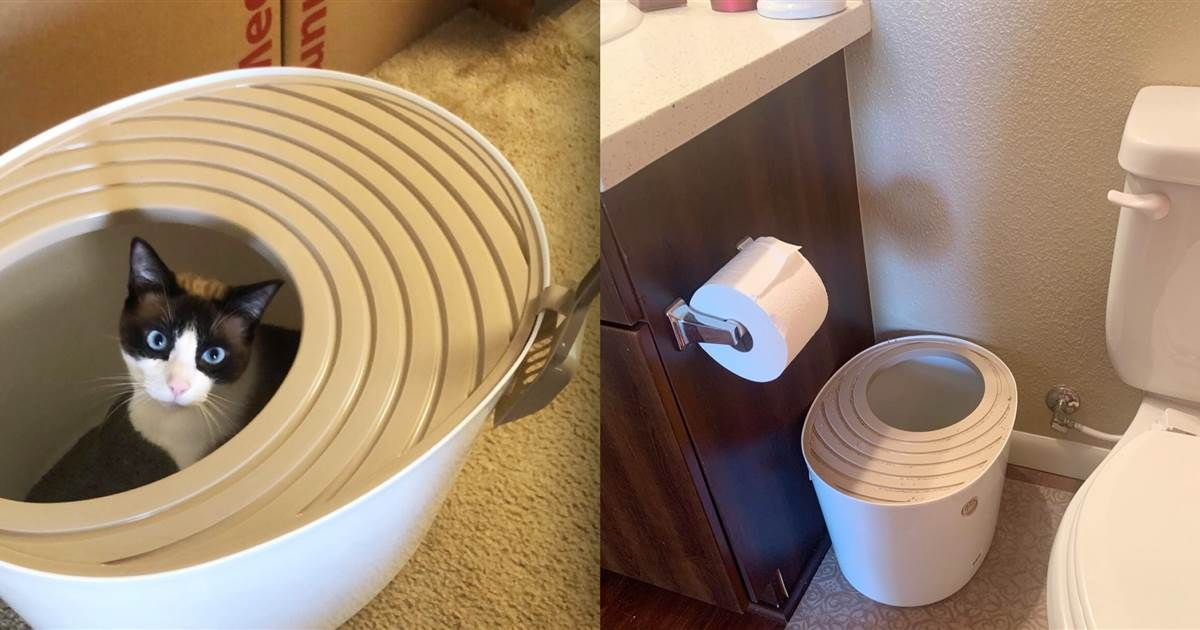 This unique litter box has saved me hours on cleaning my