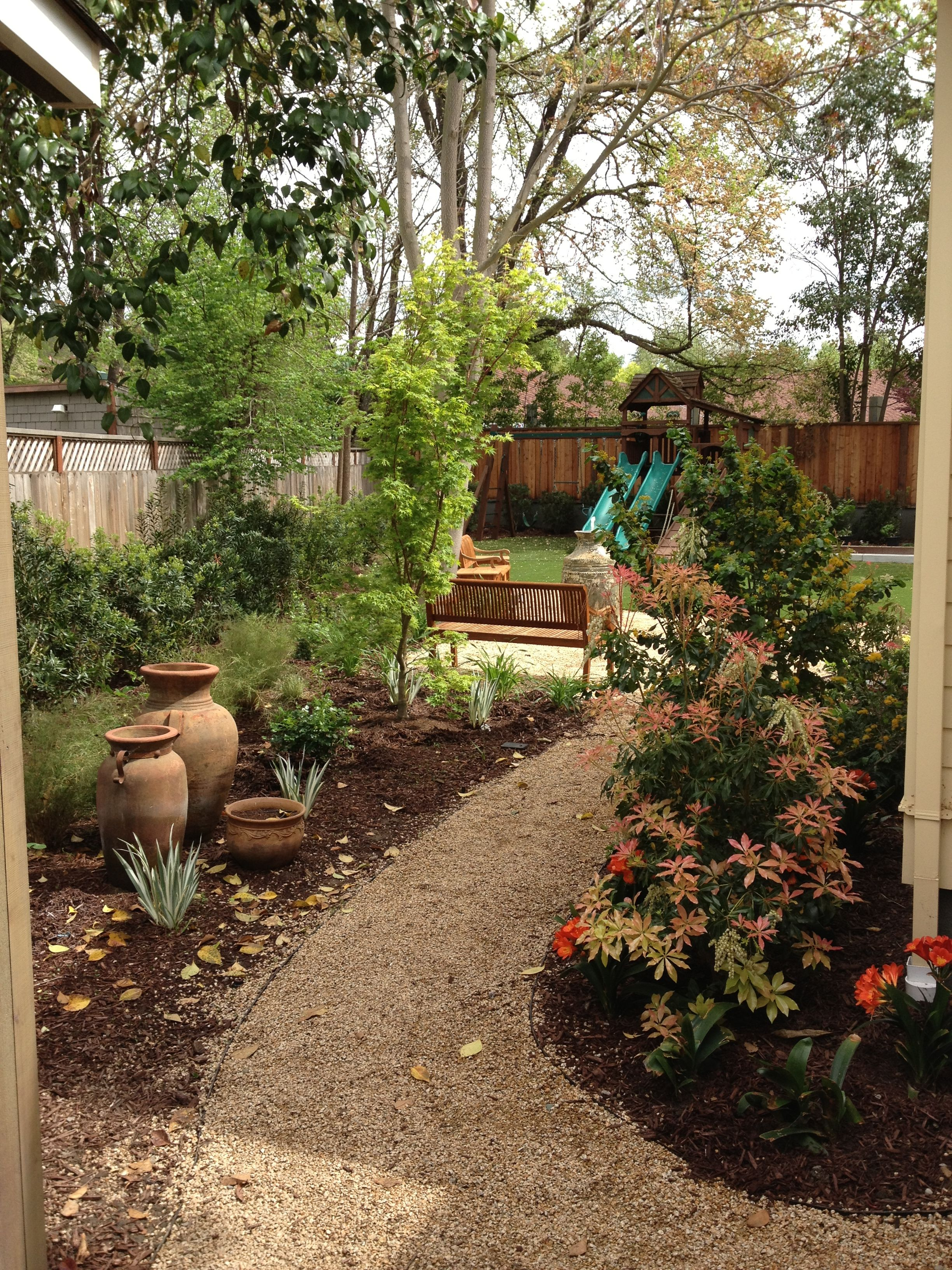 Garden path and planting. California gold gravel, 3/8