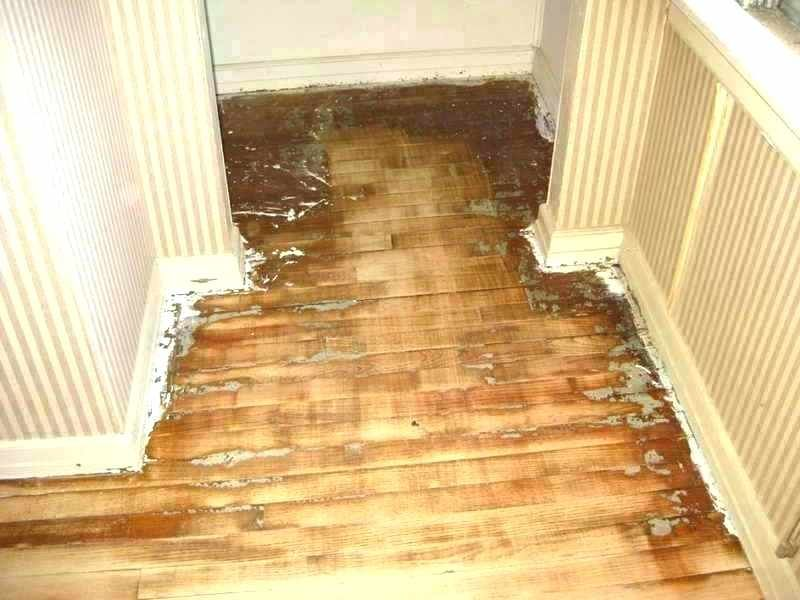 Average Cost To Refinish Hardwood Floors How Much Does It