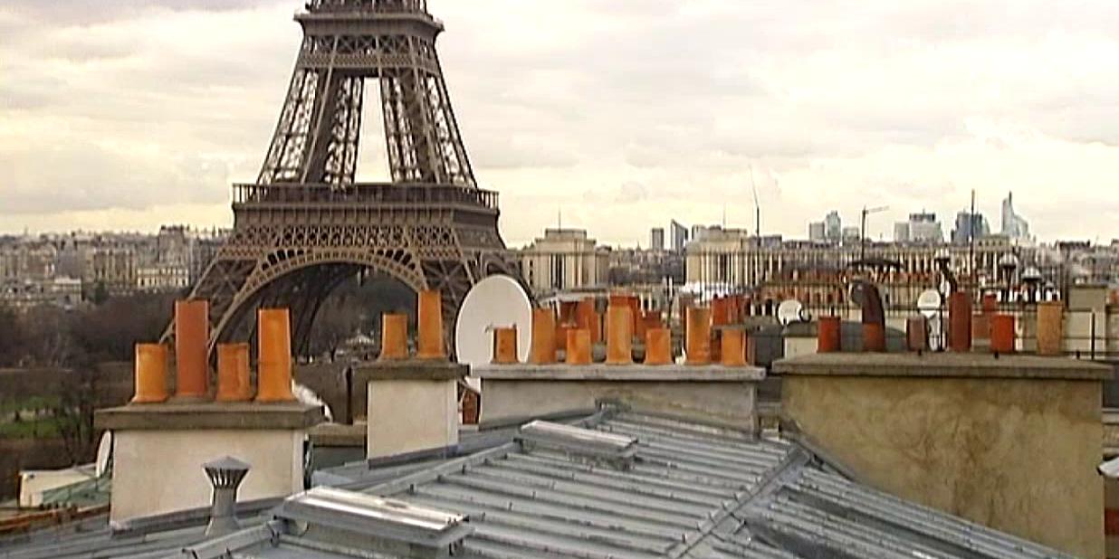 """Toits de Paris : un """"océan"""" de zinc et d'ardoise au patrimoine de l'Unesco ?"""