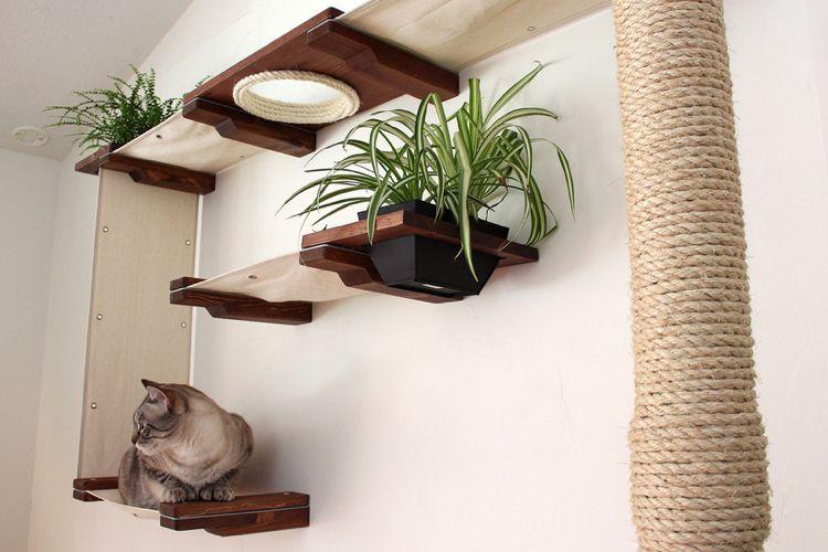 Katzen Kletterwand Selber Bauen Anleitung Bilder Und Ideen