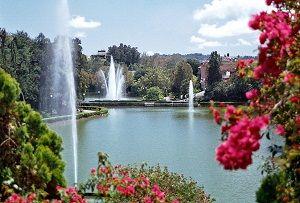 El Paseo de Los Lagos Xalapa es un atractivo natural rodeado de jardines, andadores y tres lagos.
