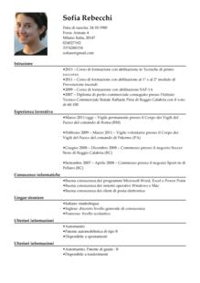 Modello Curriculum Vitae Cv Badante Curriculum Vitae Pinterest