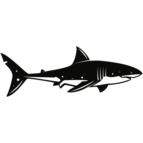 Shark Shark Silhouette Shark Silhouette Clip Art