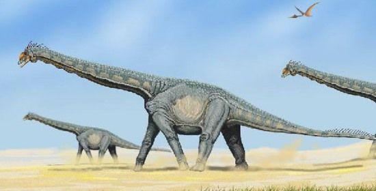 Dinosauri: scoperti i resti del Titanosauro in Tanzania - NextMe