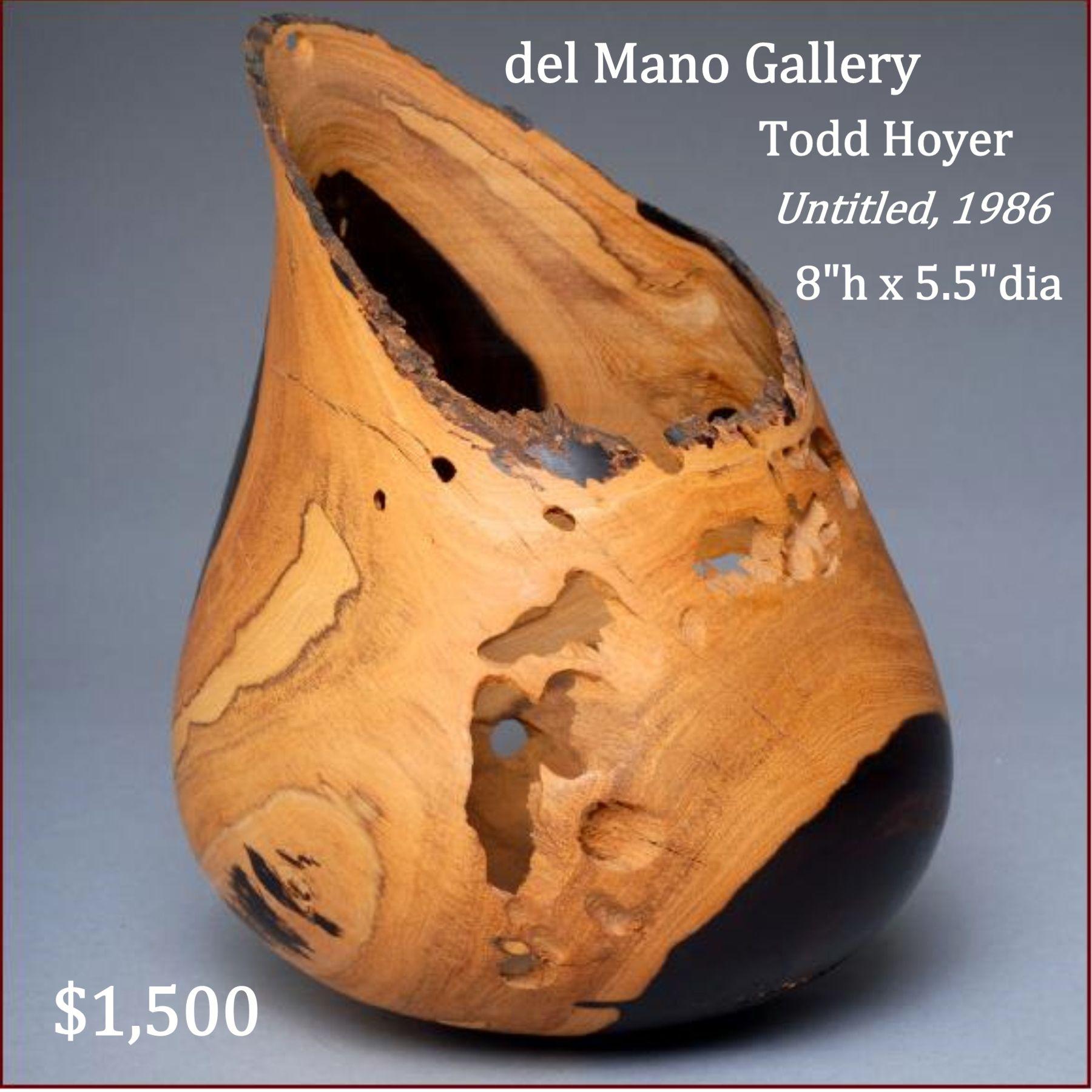 Artist todd hoyer del mano gallery masters of contemporary wood artist todd hoyer del mano gallery masters of contemporary wood art reviewsmspy
