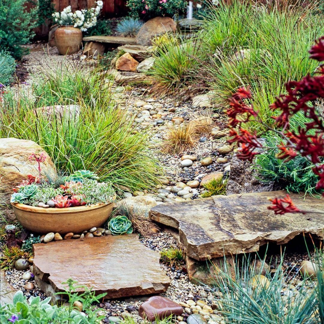 da662b3f81d0d91451fdb96dc788b8da - Better Homes And Gardens Plants For Sale