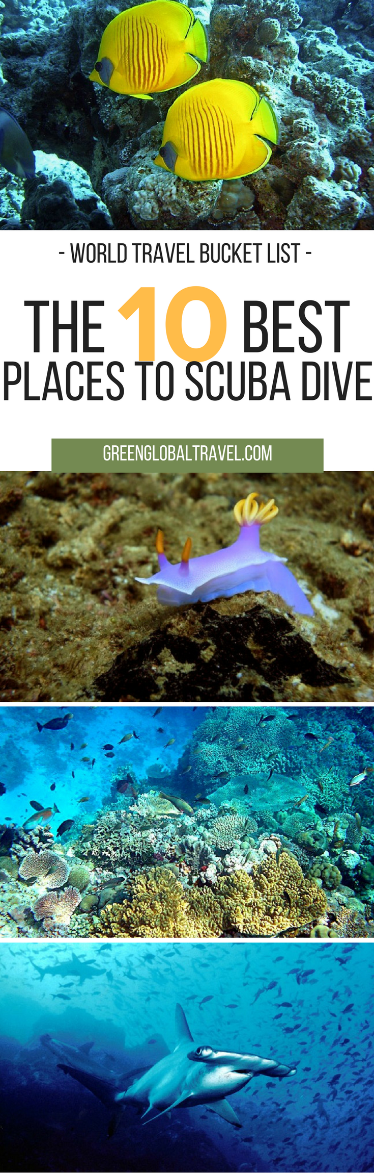 Best Places To Scuba Dive For A World Travel Bucket List - The snorkeling guide to florida 10 spots for underwater exploring
