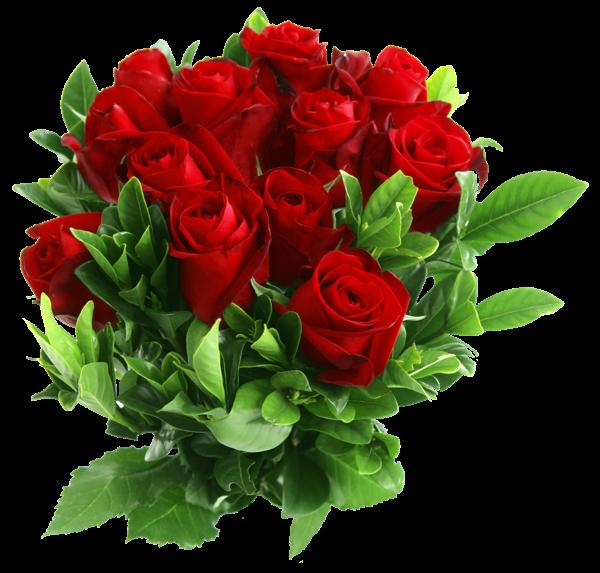 Imagenes De Rosas De Colores Bouquet De Rosas Rojas Ramo De Rosas Rosa Roja