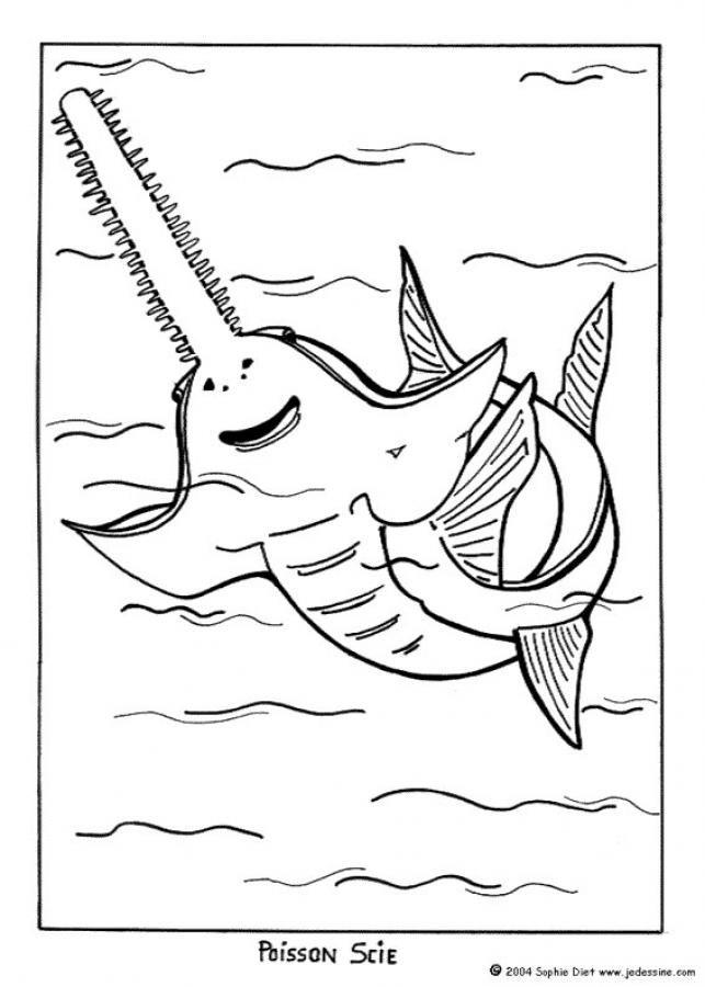 sawfish coloring page