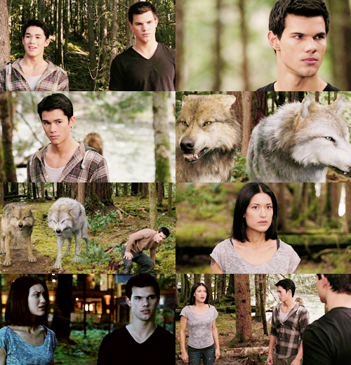 """"""" I think you make a good Alpha. Not in the same way Sam does, but in your own way. You're worth following, Jacob. """" """""""