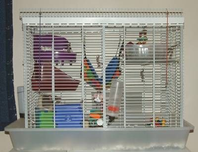 This Diy Cage Is Perfect For Pet Rats Rat Cage Pet Rat Cages Pet Rats