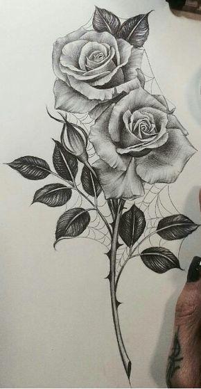 I Simply Appreciate The Different Colors Lines And Fine Detail This Is Certainly An Outstanding Conc Dibujos A Lapiz Rosas Dibujo De Rosas Dibujos De Rosas