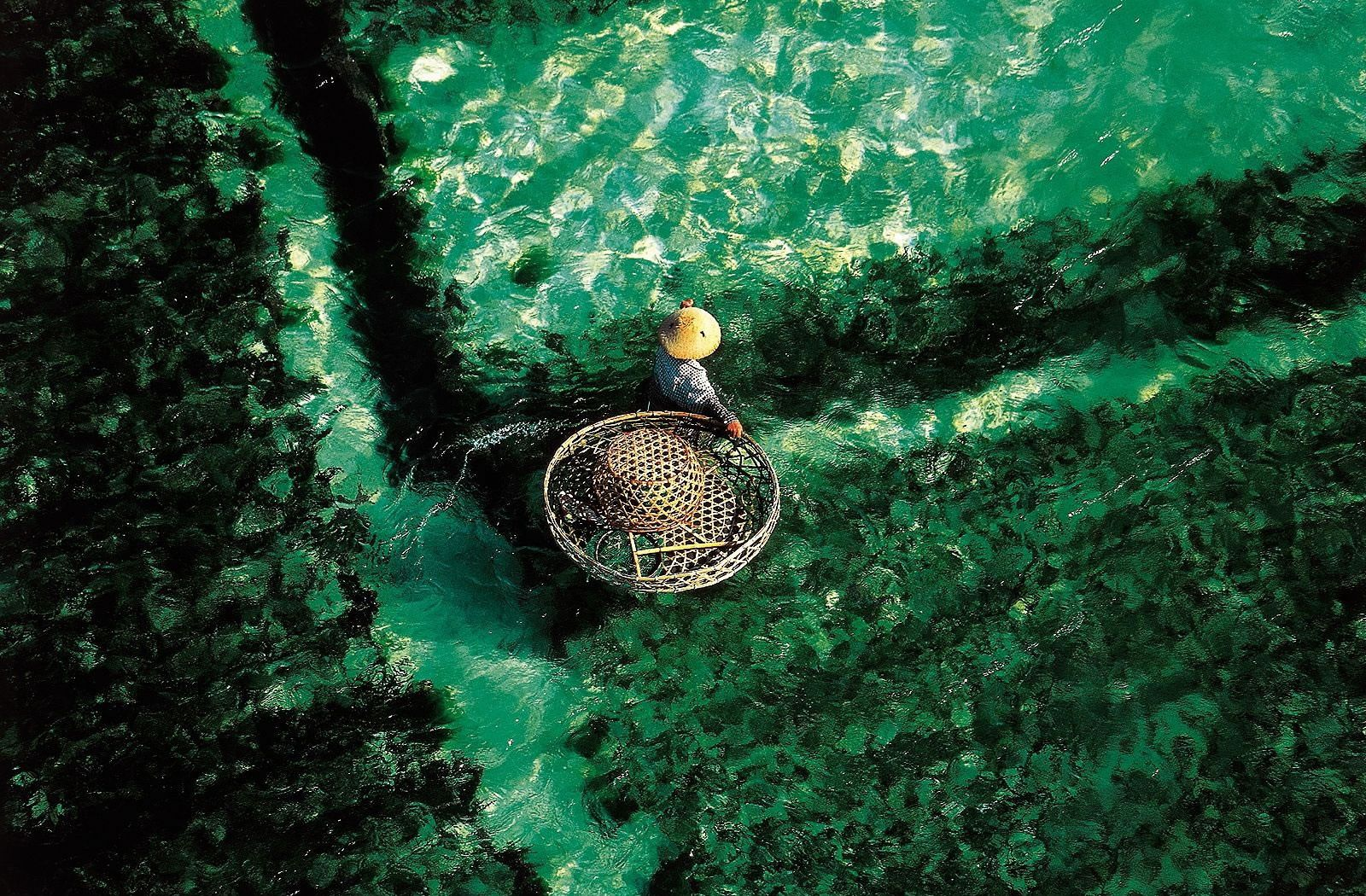 Yann Arthus Bertrand French Artists Aerial Images Cool