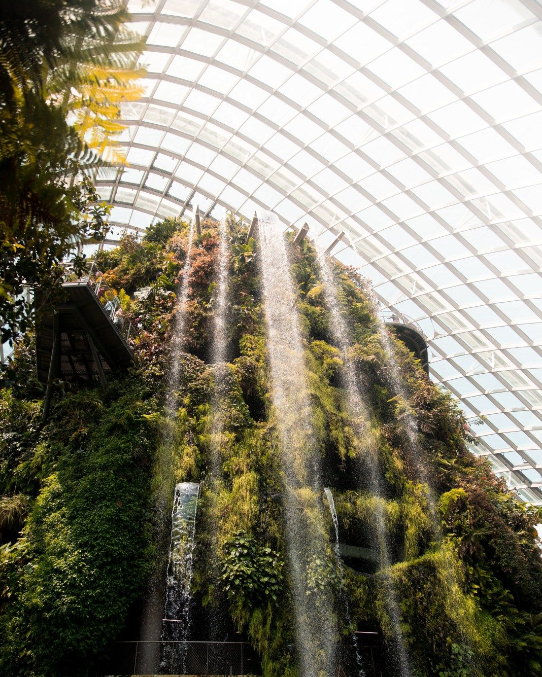A Complete Guide To Gardens By The Bay Gardens By The Bay Singapore Travel Tips Singapore Guide
