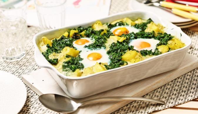 49++ Spinat kartoffel auflauf mit ei Trends