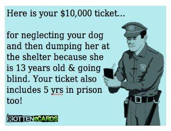 I Wish I Could Write That Ticket I Would Be Happy To Do It Then Take The Dog Home With Me Old Dogs Dogs Going Blind
