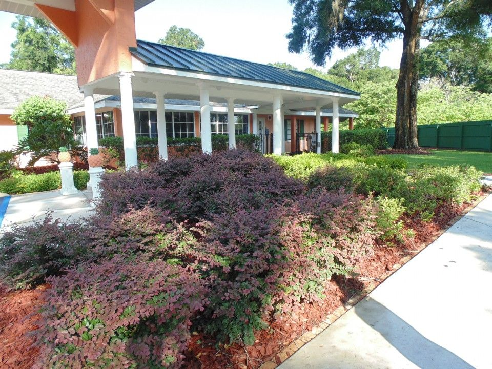 Hampton manor is an assisted living community with 42