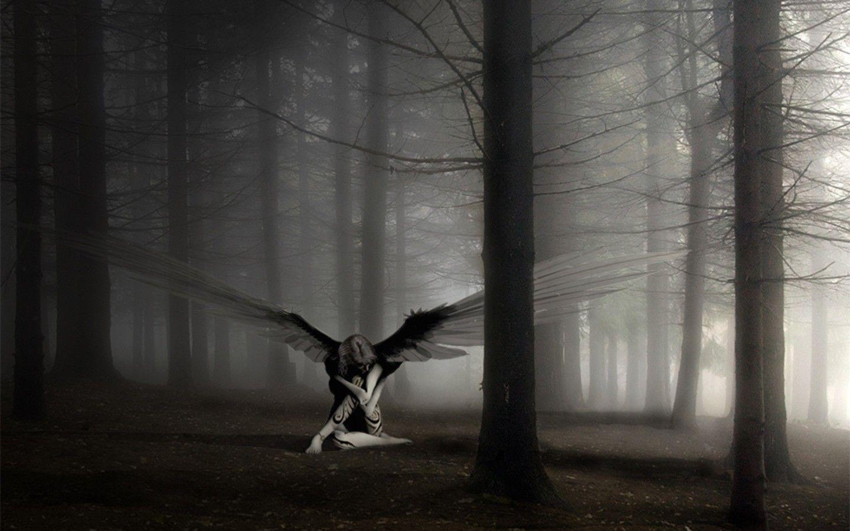 forest Fallen angel