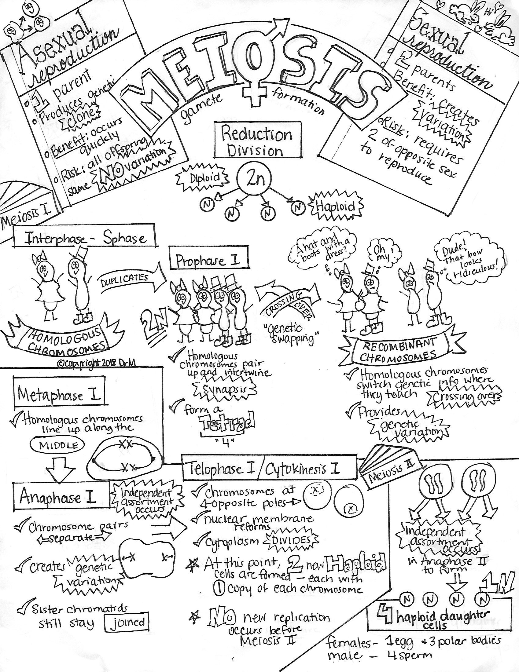 What Does The Research Say About Using Sketch Notes In The