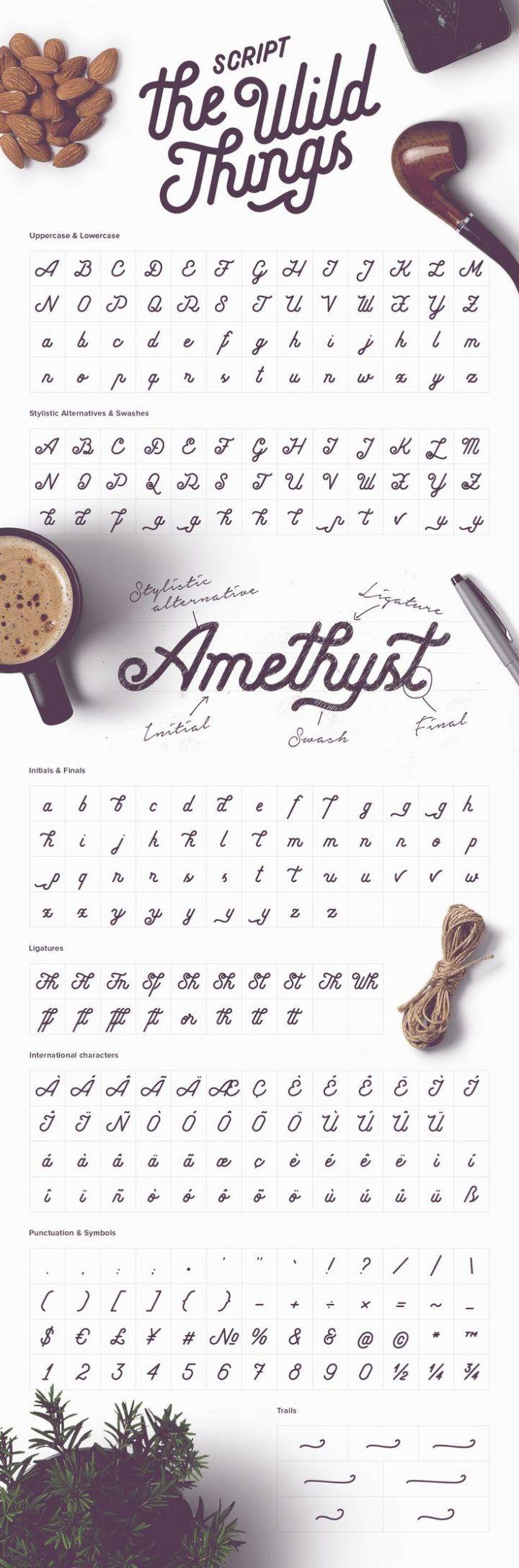 Das wilde Ding-Skript-Guss-Alphabet, handgeschrieben mit Flourishes ...