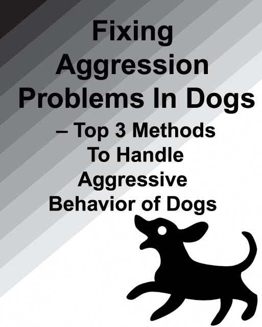 Fixing Dog Obedience Problems for Aggressive Dogs
