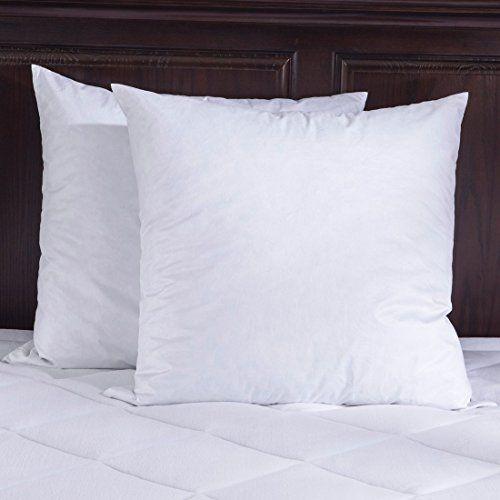 Pin By Crystal Michelle On Livingroom Revamp Pinterest Pillows Stunning King Sham Pillow Insert