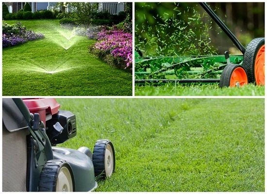 Taking Care Of Your Lawn During A Drought Http Www Greenvalleyirrigation