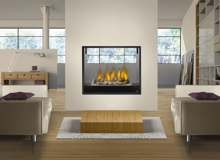 13 Appealing Mini Gas Fireplace Photograph Idea Dengan Gambar
