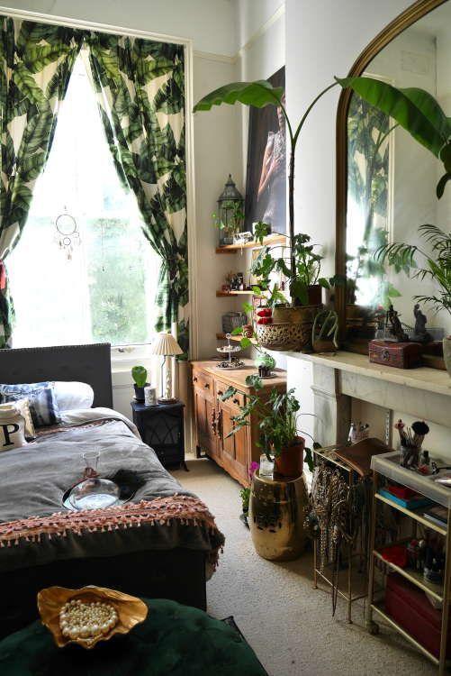 Over 80 Plants Make This Small Uk Rental Feel Like A
