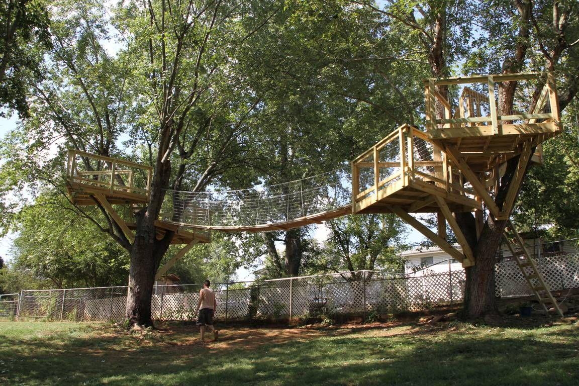 simple tree platforms. Tree House With Bridge Simple Platforms T