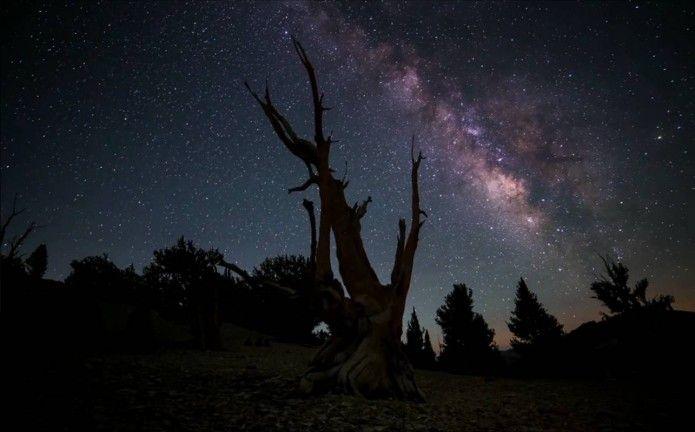 Into the atmosphere // Michael Shainblum