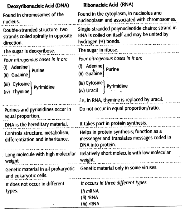 Pin by NCERT Solutions on CBSE Notes for Class 11 Biology