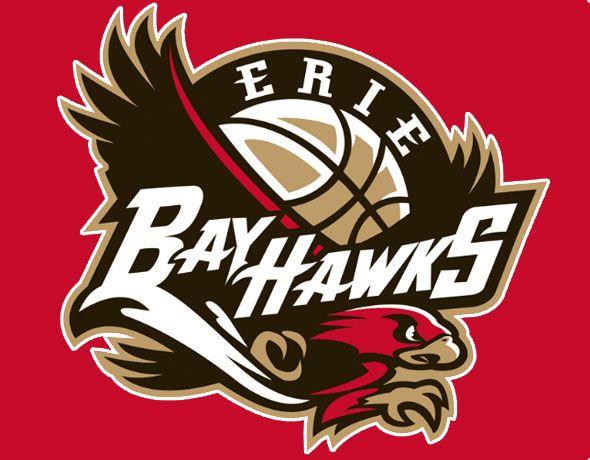Erie Bayhawks Stats - image 9