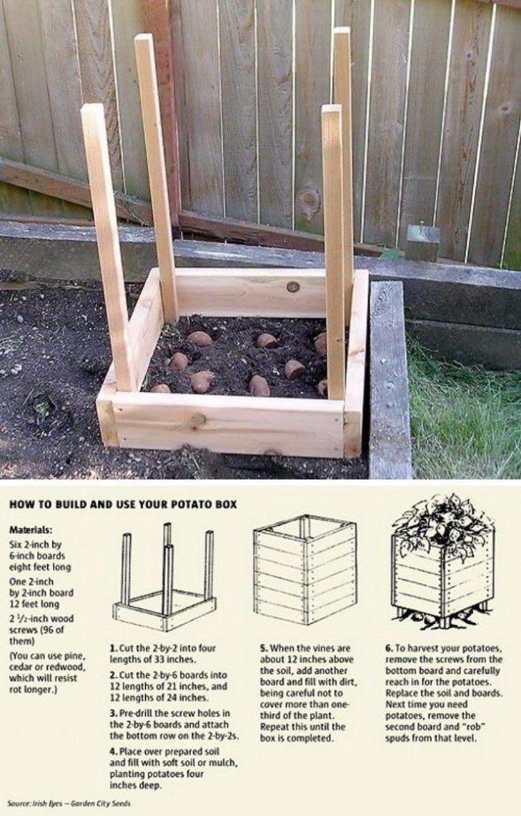 30 Genius Gardening Ideas On Low Budget Cheap Garden Ideas In 2020 Creative Gardening Diy Garden Projects Easy Garden