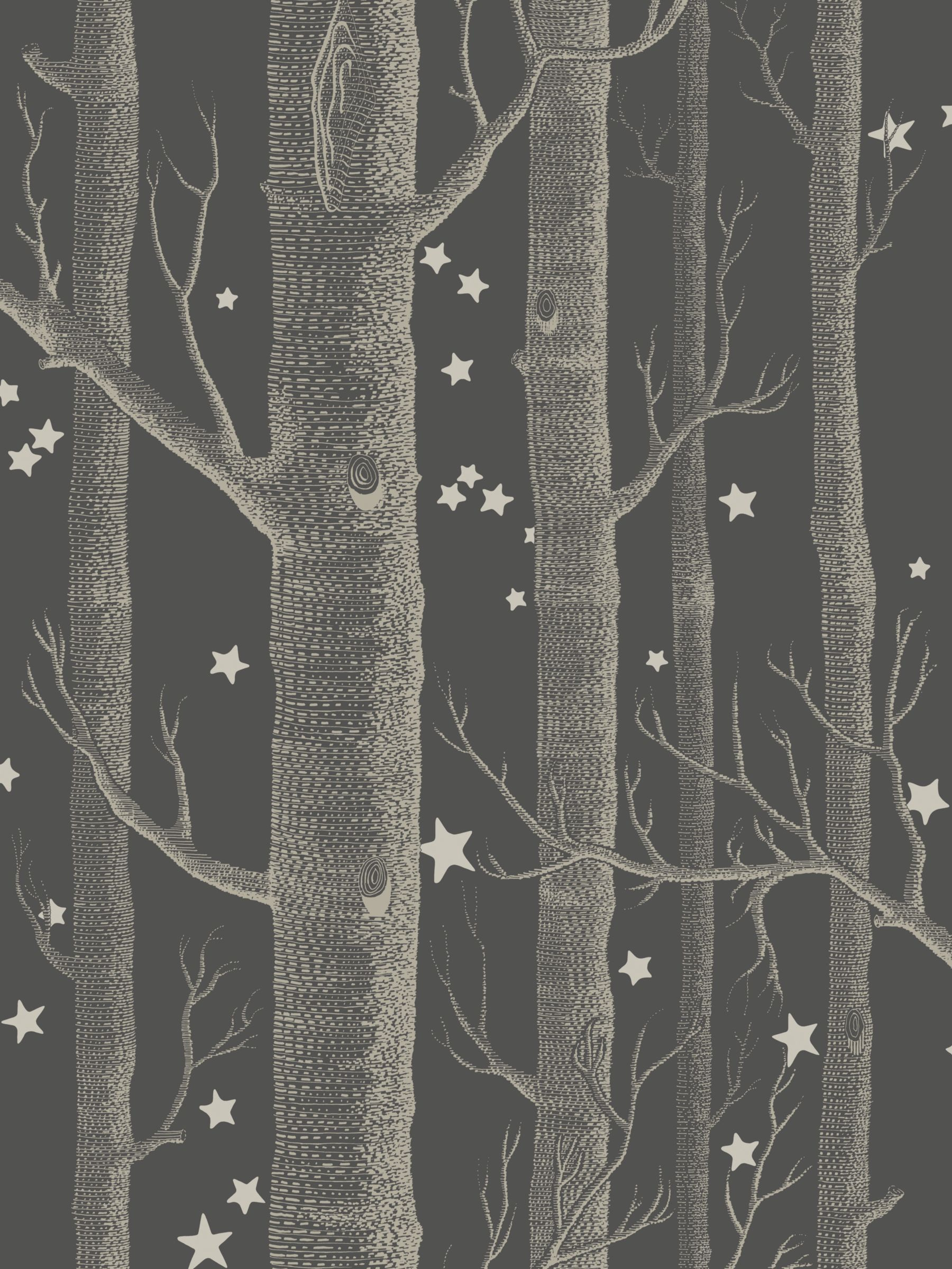 Woods And Stars By Cole Son Black And White Wallpaper 103