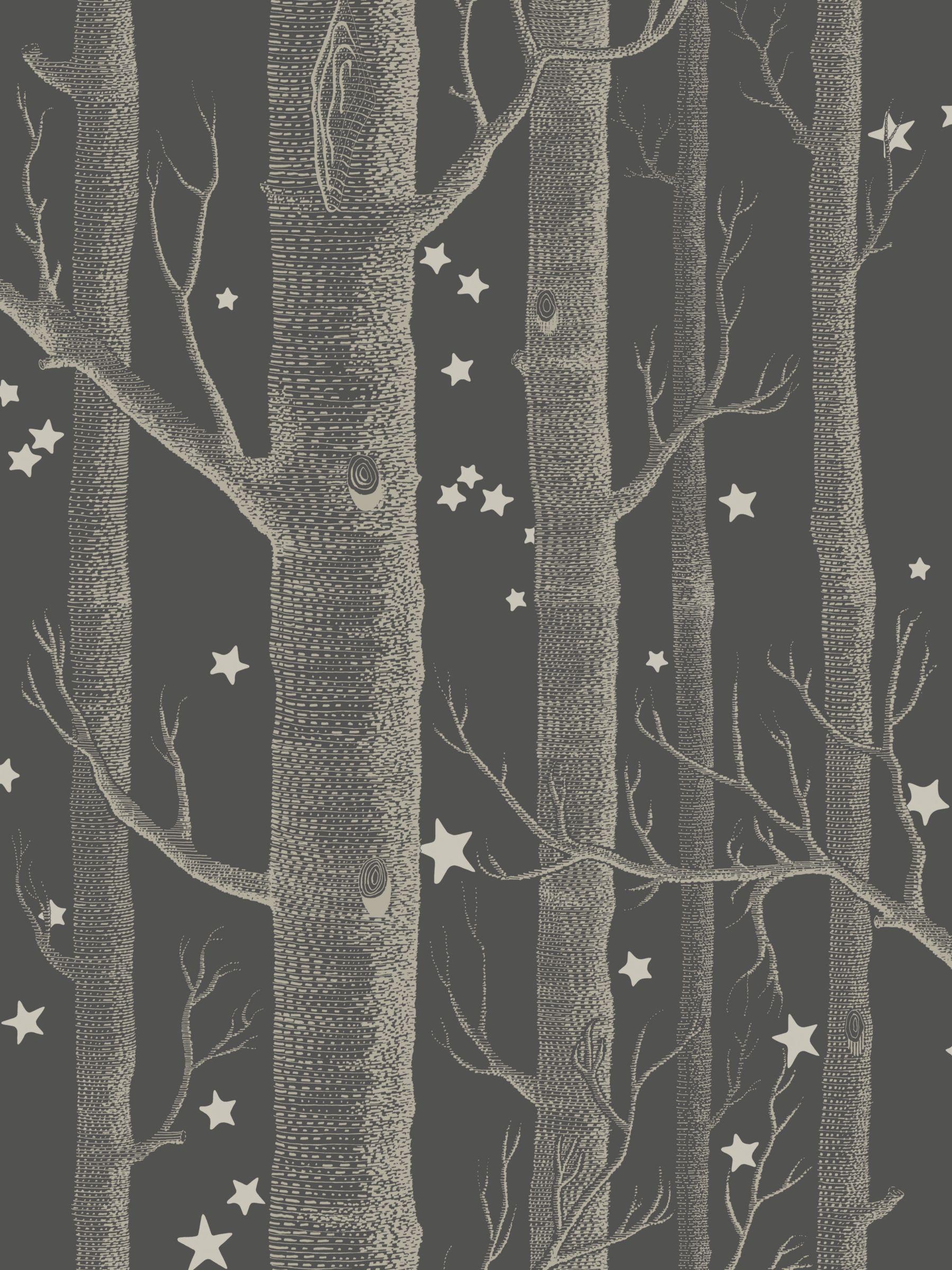 Cole Son Woods Stars Wallpaper In 2020 Cole Son Wallpaper