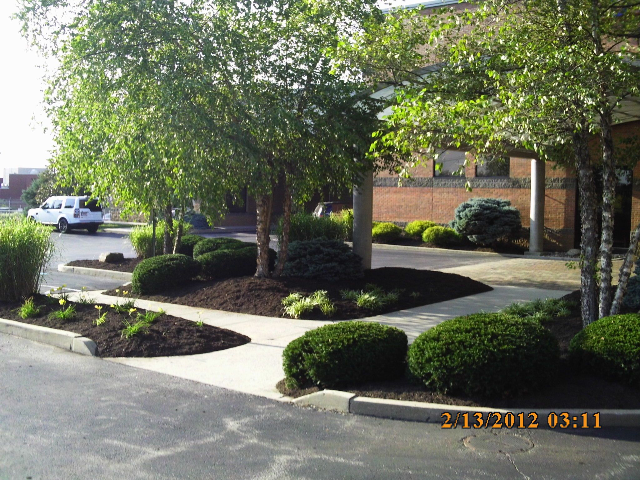 Landscaping Job 20 Mulch Spring Cleanup Commercial Landscaping Landscaping Jobs Mulch