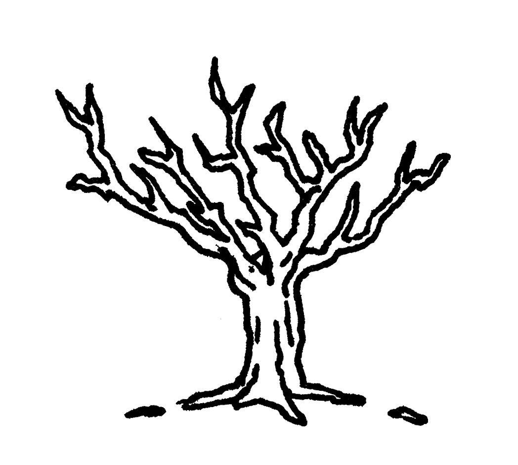 Hojas De Arboles Para Pintar Great Dibujos Para Imprimir With Hojas De Arboles Para Pintar Finest Dibujos Arboles Para Pintar With Hoja Art Moose Art Animals