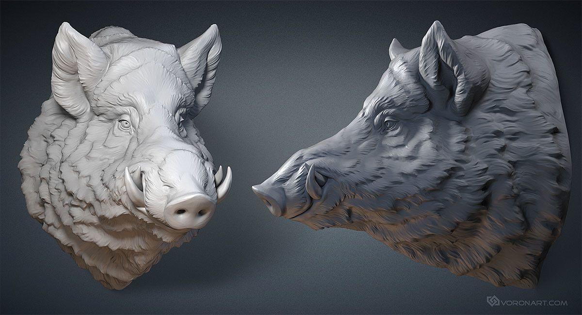 ArtStation - Wild Boar head. Digital sculpture, Nikolay Vorobyov ...