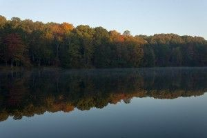 Why You Need To Visit Lake Logan State Park In The Hocking Hills Ohio State Parks State Parks Lake