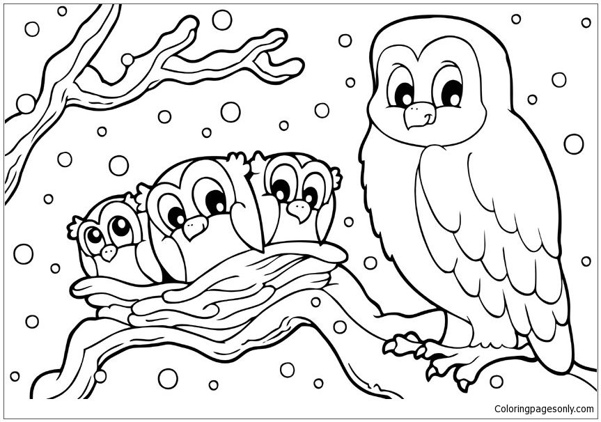 Winter Snowy Owl Coloring Page Owl Coloring Pages Bird Coloring