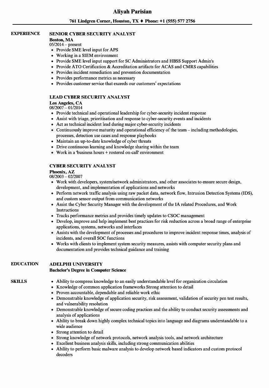 Cyber Security Analyst Resume Luxury 10 Summary Of Qualifications Samples Resume Examples Project Manager Resume Job Resume Samples