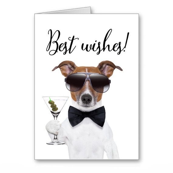 Greetings Cards Happy Birthday Jack Russell Terrier Funny Dog With Sunglasses And Glass Of Martini Best Wi Happy Birthday Happy Birthday Images Birthday Images