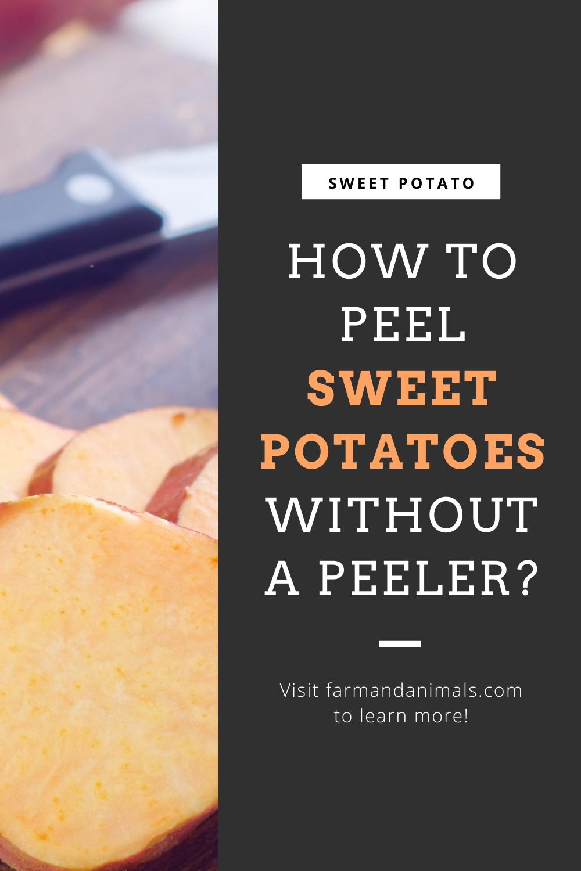 How To Peel Sweet Potatoes : sweet, potatoes, SWEET, POTATOES, WITHOUT, PEELER?, Sweet, Potato,, Potatoes,, Thanksgiving, Recipes